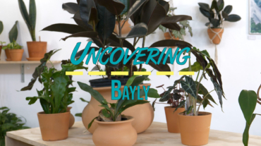 Uncovering Bayly thumb